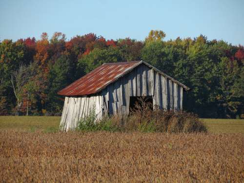 Hut Shed Derelict Ruin Abandoned Wooden Deserted