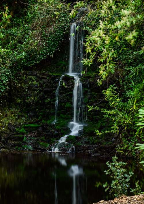 Landscape Nature Waterfall Forest
