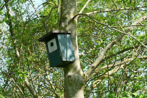 Nesting Box Aviary Bird Feeder Tree
