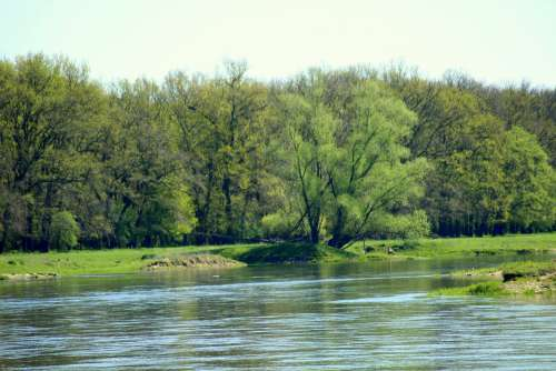 River Water Measles Current Spring Landscape