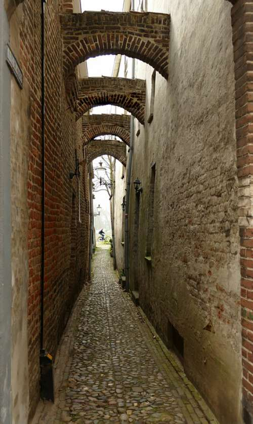 Rose Passage Corridor Narrow Arc Wall Bicycle