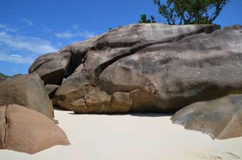 Seychelles Dolphin Rock Dolphin Island Beach