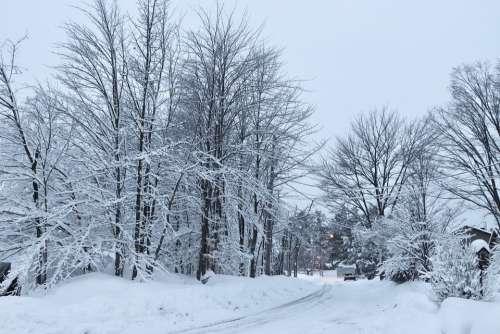 Snow Street Winter City Cold Road Landscape