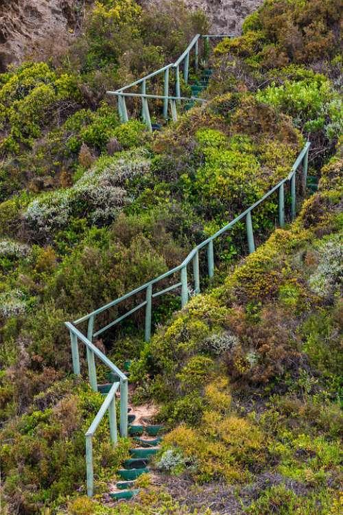 Stairway Handrails Steps Stairs Ambition Bush