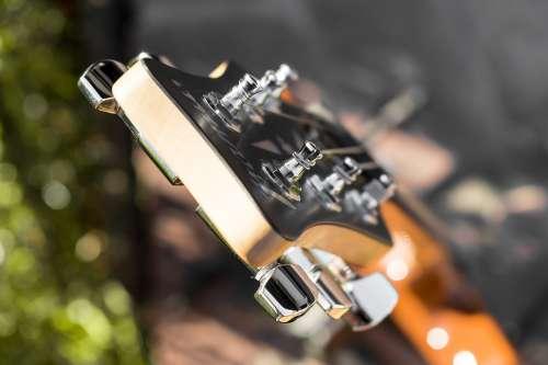 Summer Guitar Music Instrument Joy Of Life