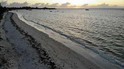 Sunrise Beach Ocean Sea Dawn Water Sky Happy