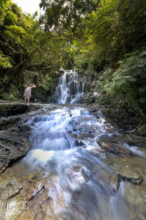 Tropical Jungle The Waterfall Vietnam Natural