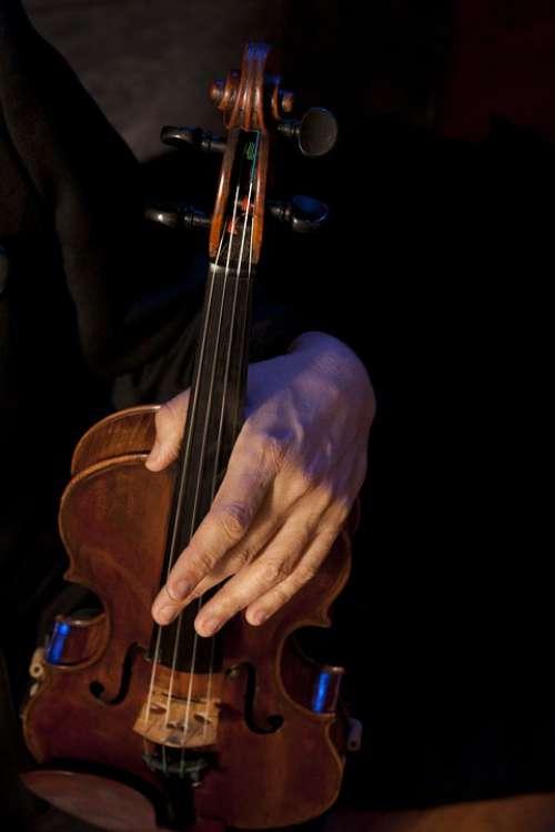 Violin Violinist Strings Musician Orchestra