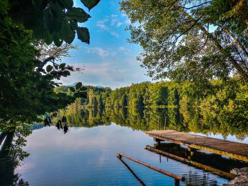 Web Lake Tüttensee Water Nature Landscape Rest