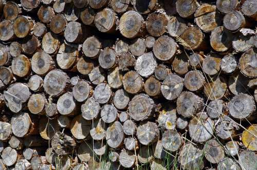 Wood Holzstapel Firewood Storage Stacked Up Stock
