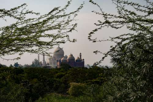 Distant View of Taj Mahal Surounded by Nature