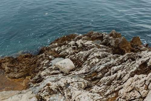Rocky coastline on the Adriatic Sea in the small town of Rovinj, Croatia