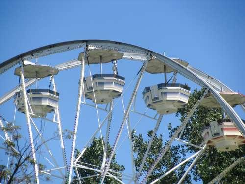 Ferris Wheel In Front of Tree