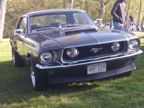 Ford Mustang car Muscle Pony