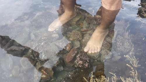 beach ocean seashore Australia feet