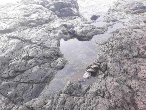Ocean beach seashore shore Australia