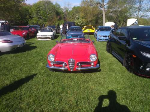 Alfa Romeo Giulietta car show classic