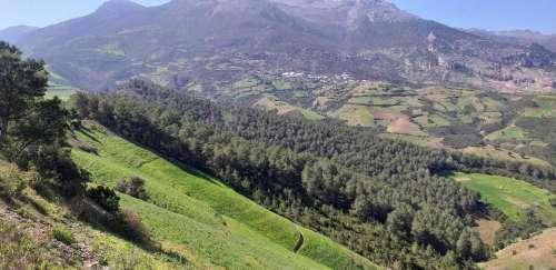 campaign tetouan Morocco