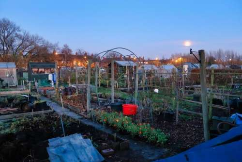 newcastle allotment garden allotment garden green