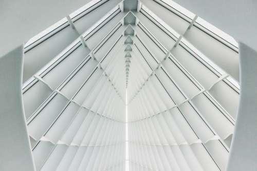 Architecture Building Ceiling Contemporary Design