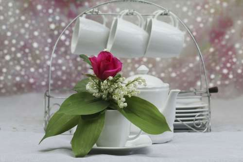 Bouquet Cups Decoration Coffee Flowers Thrush