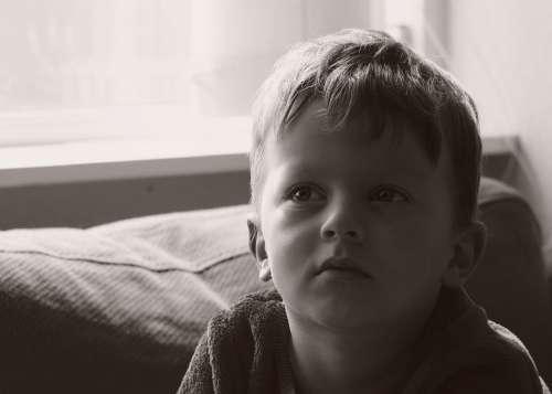 Boy Child Kid Cute People Portrait Children