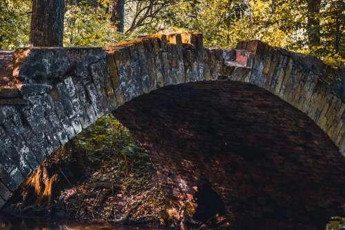 Bridge Bridges River Tree Trees Background Autumn