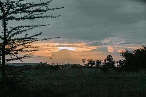Cambodia Sunset Landscape Nature
