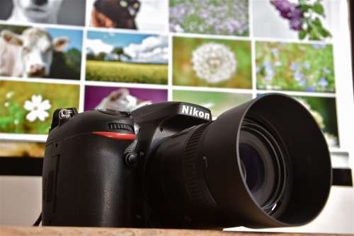 Camera Digital Nikon Photography Photographer