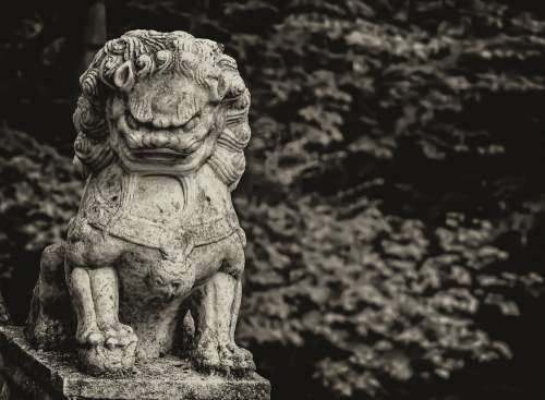 China Lion Sepia Statue Luck Asia Marble Nature