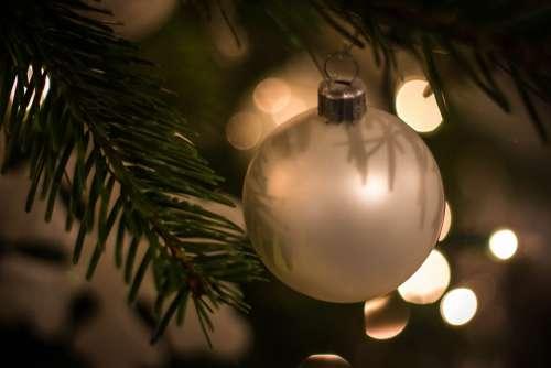 Christmas Christmas Spirit Christmas Decorations