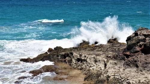 Coast Sea Ocean Wave Surf Island Water