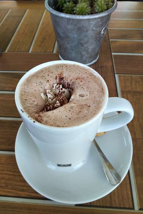 Cocoa Coffee Chocolate Drink Cup Beverages Sweet