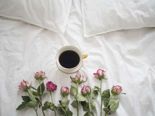 Coffee Roses Bed Porcelain A Cup Of Coffee