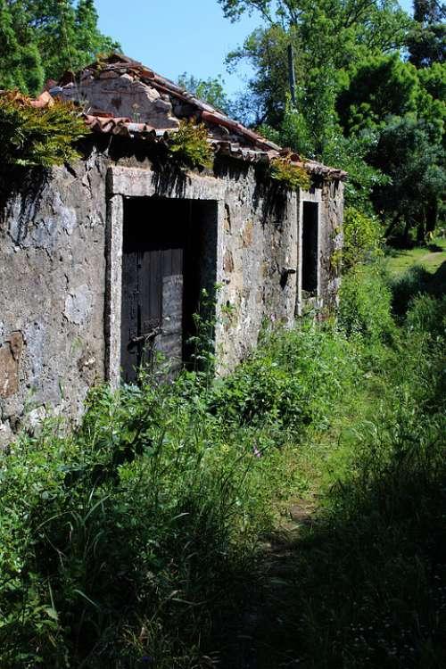 Cottage Old House Vintage Village Landscape