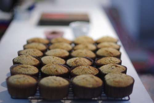 Cupcake Tasty Cake Muffin Bakery Dessert Cupcakes