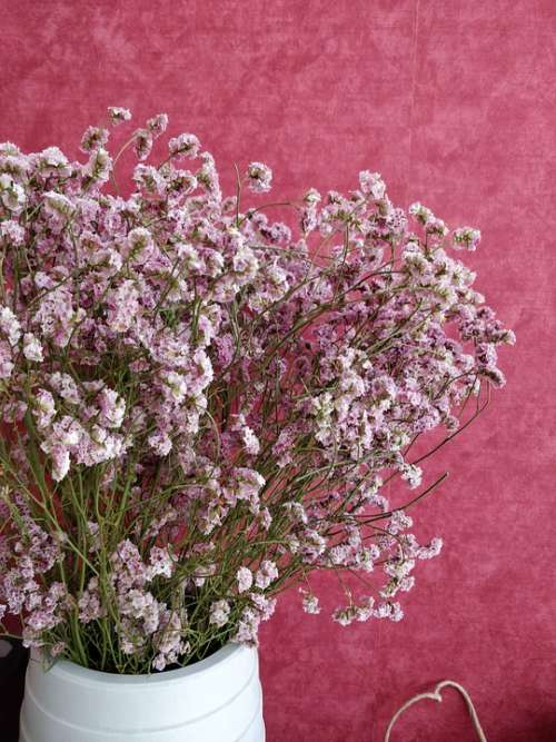 Dried Flowers Bouquet Pink