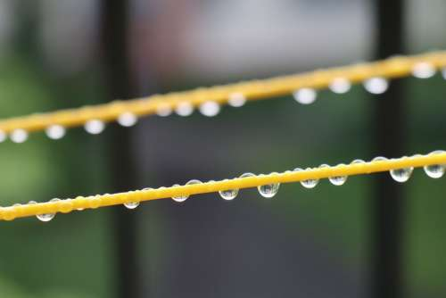 Droplets Water Weather String Wet Rain