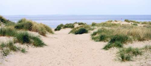 Dunes Beach Sand Sea North Sea Holland Texel