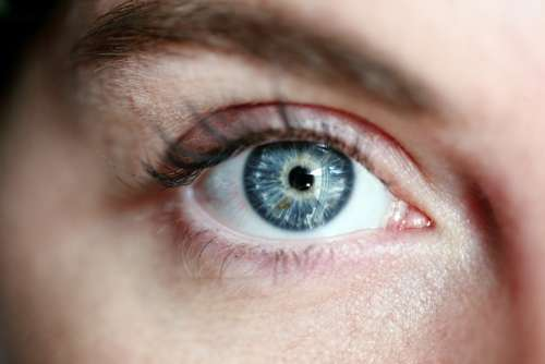 Eye Blue Eye Woman Eye Lashes Portrait Skin Girl