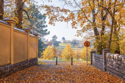 Fall Autumn Leaves Colorful Mood Season October