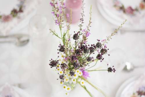 Flowers Wedding Romantic Table Floral Romance