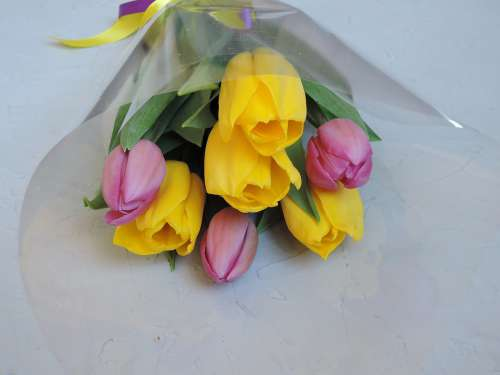 Flowers Bouquet Pink Yellow Tulips Spring March 8