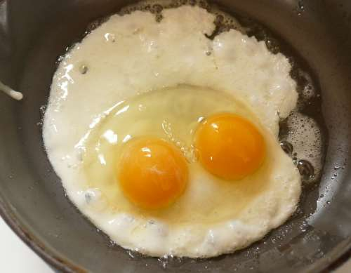 Fried Egg Double Yolked Egg Egg With Two Yolks Egg