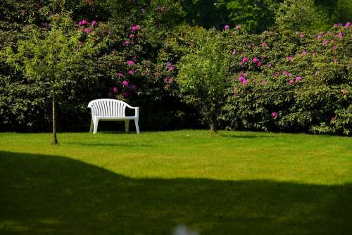 Garden Bench Relaxation Oasis Of Peace Sit Nature
