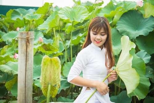 Girl Vietnam Female Portrait People Plant Leaf
