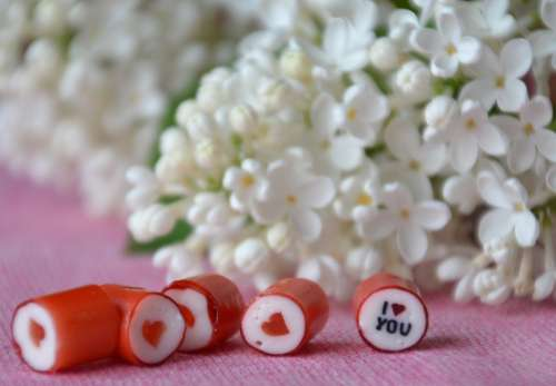 Heart Love Romantic Valentine Romance Red