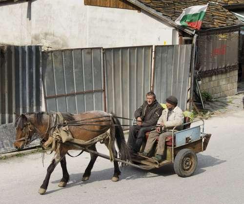 Horse Cart Rural Village Bulgaria Coca Cola