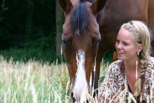 Horses Girl Paardenmeisje Woman Young Nature Love
