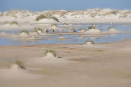 Kniepsand Island Amrum Watts North Sea Beach Sea